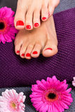 Bare feet of a woman surrounded by flowers Stock Image