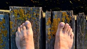 Bare feet on wooden boards with moving toes. Bare feet on wooden boards of old bridge with moving toes stock footage