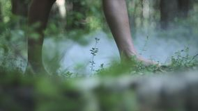 Bare Feet Of A Young Woman. Young bare feet girl walking on the grass in mysterious forest stock video