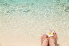 Bare female feet with frangipani flower in the water of the sea Stock Photography
