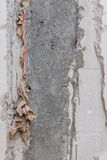Bare raw concrete wall texture useful as background Royalty Free Stock Photography