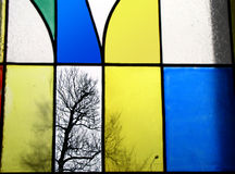 Bare tree. In multicoloured window, fall, autumn Royalty Free Stock Image