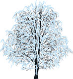Bare tree in blue snow isolated on white Royalty Free Stock Photo