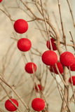 Bare tree branches with hanging red string balls Stock Photo