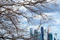 Bare tree branches and towers of Moscow-city. View from observation deck on Sparrow Hills (Vorobyovy Gory) - bare tree branches and towers of Moscow-city stock images