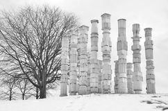 Bare Tree and Columns Royalty Free Stock Photography