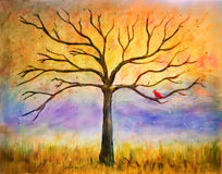 Bare tree in golden light with cardinal royalty free stock image