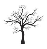 Bare tree silhouette vector symbol icon design. Beautiful illustration isolated on white background Stock Photos