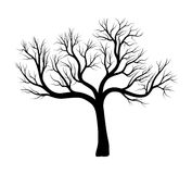 Bare tree silhouette vector symbol icon design. Royalty Free Stock Images