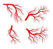 Bare tree silhouette vector symbol icon design. Royalty Free Stock Photo