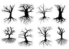 Bare Tree Silhouettes With Roots Royalty Free Stock Images