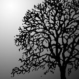 Bare tree vector Royalty Free Stock Images