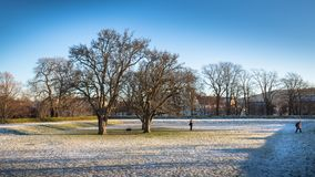 City park with snow, Oslo, Norway. Bare trees in city park with dusting of snow in Oslo, Norway on sunny day stock photos