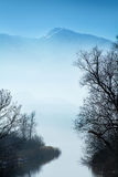 Bare trees on a lake and blurred blue mountains in the backgroun Stock Images
