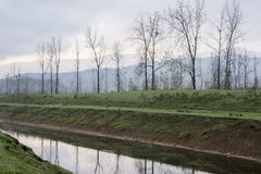 Bare trees landscape with water canal reflection seasonal change Stock Photos