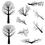Bare trees silhouette Royalty Free Stock Images