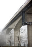 Bare tress under bridge in fog Stock Photo