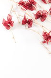 Bare twigs and ribbons Royalty Free Stock Photography