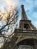 Bare winter branches frame the Eiffel Tower at sunset on a winter day Stock Image