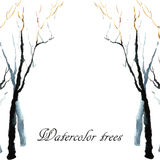 Bare winter branches of the trees. Royalty Free Stock Photos