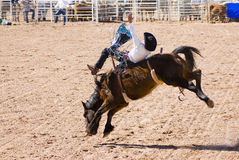 Bareback riding Stock Images