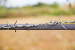 Bared Wired. Of thailand Stock Images