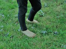 Barefeet. Bare feet against green grass Stock Photography