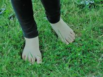 Barefeet. Bare feet against green grass Royalty Free Stock Photos
