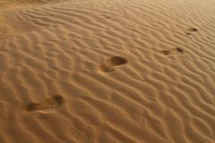 Barefeet footprints on the sand dune. Barefeet human footprints on the sand dune in the desert Royalty Free Stock Photography