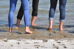 Barefeet women in water. Barefeet women with jeans wading in water for refreshment Royalty Free Stock Photo
