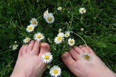 Barefoot среди маргариток Стоковые Изображения