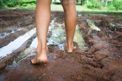 Barefoot через тинную дорогу Стоковые Изображения RF