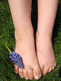 Barefoot. A child's feet in spring Stock Photos