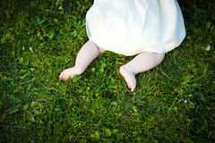 Barefoot baby girl on grass exploring Royalty Free Stock Image