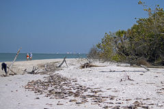 Barefoot Beach - Fort Myers Beach, Florida. Collier County's desirable coast reaches its zenith at Barefoot Beach Preserve, where numerous animal species reside stock images