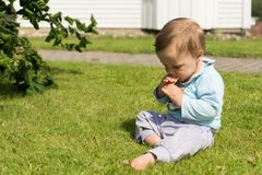 Barefoot boy crawling on the grass.  Stock Images