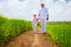 Barefoot father and son walking through the rice field Royalty Free Stock Photos
