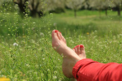 Free Barefoot Female Feet On Green Field Stock Photo - 53986470