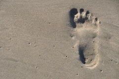 Barefoot footstep on the beach Royalty Free Stock Photos