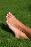 Barefoot in the Grass Stock Image