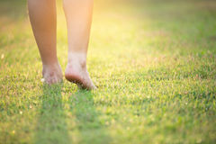 Barefoot. On the green grass stock images