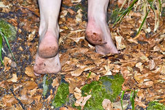 Barefoot hiker B Stock Photography