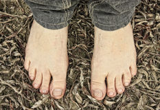Barefoot on the leaves Royalty Free Stock Photos