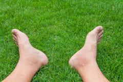 Barefoot Legs. On the Green Grass in Garden Stock Photos