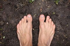 Barefoot Man Stands On Empty Black Soil Ground In Spring, Concept Of Poverty, Top View, Closeup Royalty Free Stock Photo