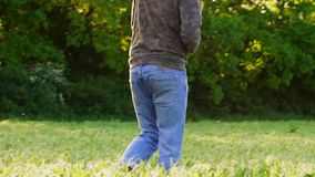Barefoot man is walking on the field among the pea beds. stock footage