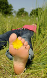 Barefoot in a meadow Stock Images