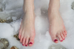 Barefoot in the snow. Woman barefoot in the snow Stock Images