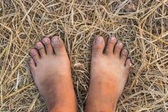 Barefoot on straw Stock Photos