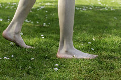 Barefoot through the summer Stock Images